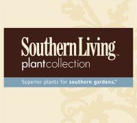 Southern Living Plant® Collection
